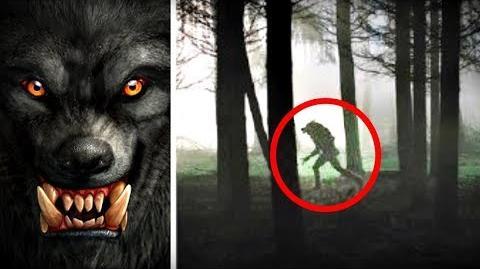 5 Terrifying WEREWOLVES Caught on Camera