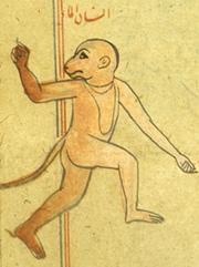 Monkey humanoid jinn