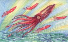 Flying-squid