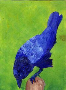 BLUE CROW 1