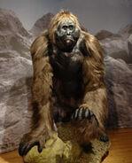29-gigantopithecus-model me.jpg