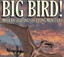 Big Bird!: Modern Sightings of Flying Monsters