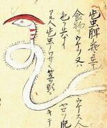 Hizo-no-kasamushi