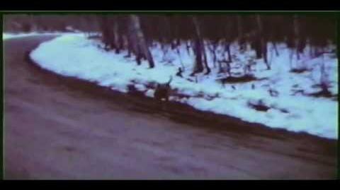 The Gable Film