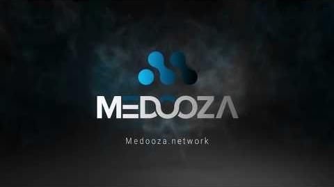 Medooza wallet guide. How to set up and import a Blockchain wallet address