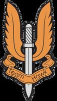 CellTeam Hawkzt