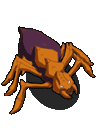 File:Cave spider60.png