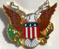 American-Eagle-Pin-L.jpg