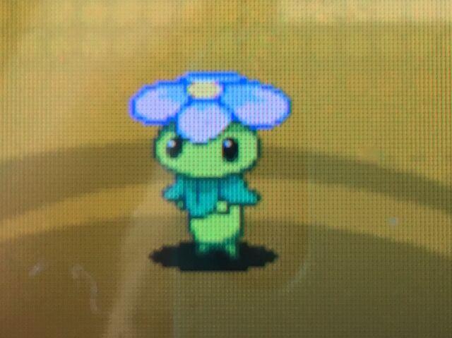 File:FlowerpowerPlus.jpg