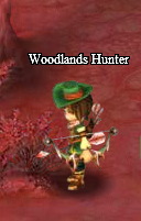 Woodhunter