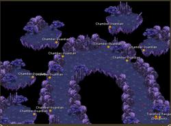 Psychodelica map