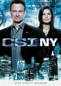 CSI NY Season Eight