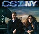 Primera temporada de CSI: NY