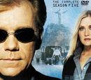 Quinta temporada de CSI: Miami
