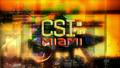 CSI Miami.png