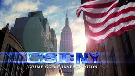 CSI NY Title