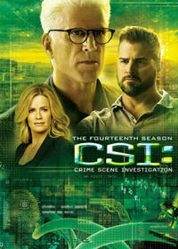 CSI Crime Scene Investigation, Season 14