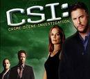 Quinta temporada de CSI: Crime Scene Investigation
