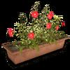 Hide cs italy flowerpot01