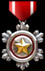CSO Medal