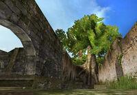Bigtree screenshot