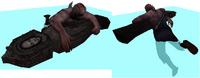 Undertaker host swim