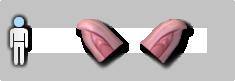 ไฟล์:Pig ear.png
