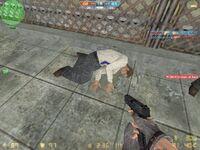 Cs camouflage 20130811 1157300