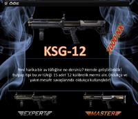 Ksg12 turkey poster