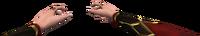 Transmichaela hand