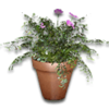 Hide potted plant1