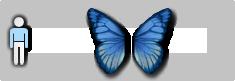 19s1butterflyback