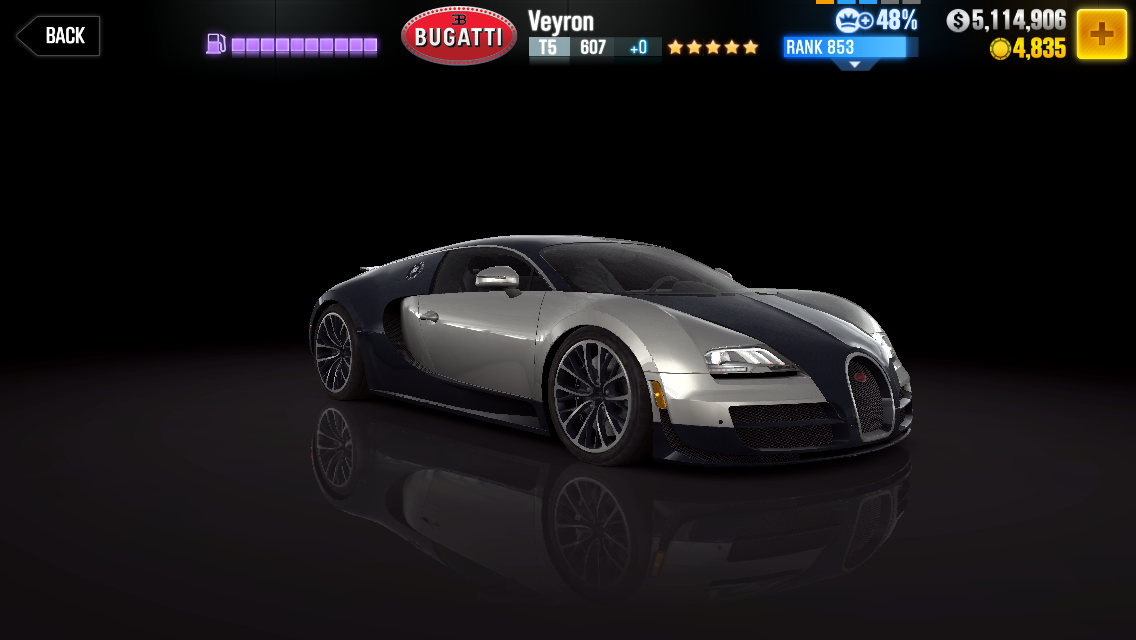 Bugatti Veyron Super Sport Model Car Kit