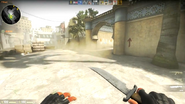 Global Offensive BETA T Knife