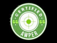 Csgo-stickers-team roles capsule-awper pw