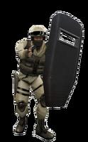 P shield2 csx