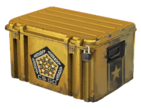 Chroma Weapon Case