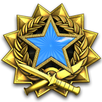 Service medal 2017 lvl2 large