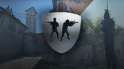 Csgo blog update wingman1