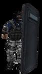 P shield flashbang