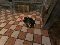 SWAT fallen