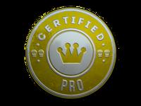 Csgo-stickers-team roles capsule-pro foil