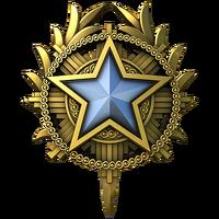 Service medal 2020 lvl1 large