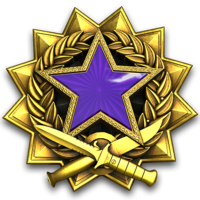 Service medal 2017 lvl4 large