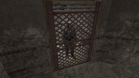 Cz downed hostage cell