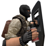 P shield hegrenade cz