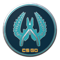 Csgo-collectible-pin-guardian