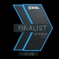 Katowice 2014 finalist large