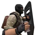 P shield flashbang cz