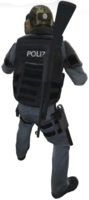 P nova holster